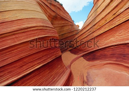 Sand dune layers turned to rock.  Vermilion Cliffs National Monument.  Film photo.  U.S.A.