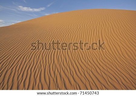 Sand dune on late afternoon (Imperial Dunes, California)