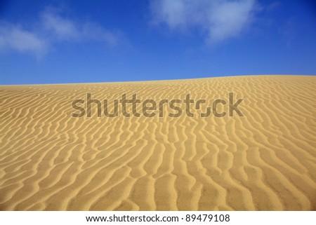 sand dune with blue sky in the namibian desert