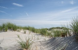 Sand dunes against blue sky background, Avalon, New Jersey