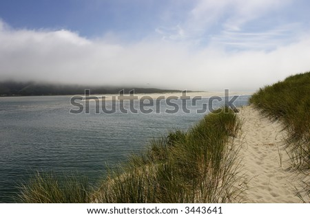 Sand dunes along the ocean with an access trail and footpath leading to the horizon (no people)