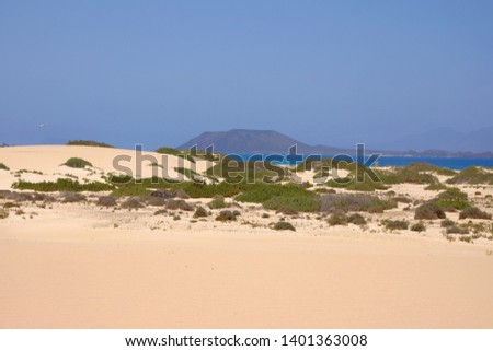 Sand Dunes and beach in National Park Corralejo, Fuerteventura, Canary Islands, Spain. #1401363008