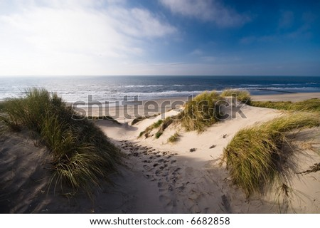 sand dunes and ocean in the netherlands