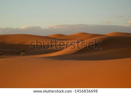 Sand dunes at dusk at Erg Chebbi, in the Moroccan region of the Sahara desert. #1456836698