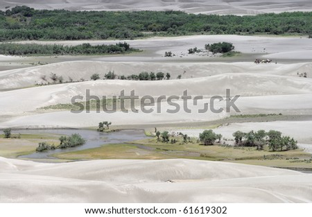 Sand Dunes at Nubra Valley Shyok River, Ladakh, India