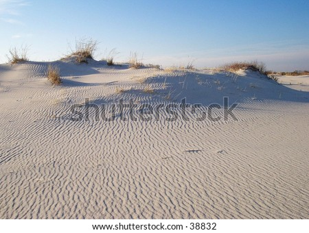 Sand Dunes at sunset on Assateague Island, near Ocean City, Maryland.