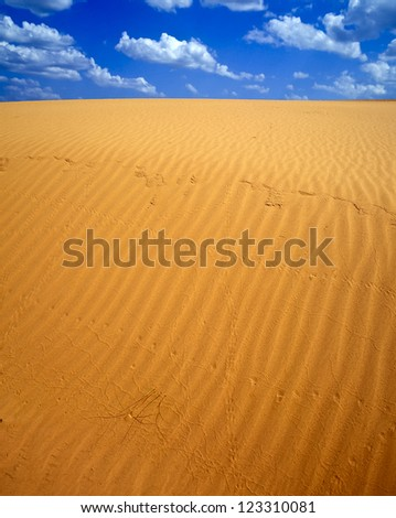 Sand dunes in Little Sahara SP, Waynoka, OK