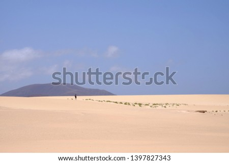 Sand Dunes in National Park Corralejo, Fuerteventura, Canary Islands, Spain. #1397827343