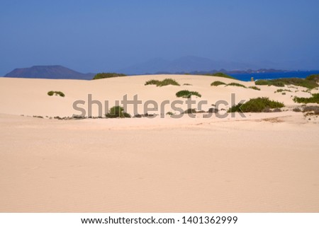 Sand Dunes in National Park Corralejo, Fuerteventura, Canary Islands, Spain. #1401362999