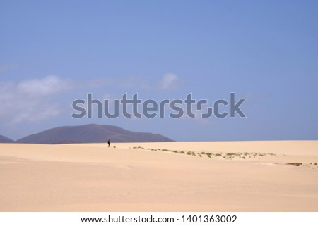 Sand Dunes in National Park Corralejo, Fuerteventura, Canary Islands, Spain. #1401363002