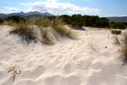 sand dunes in Sardinia behind the beach.