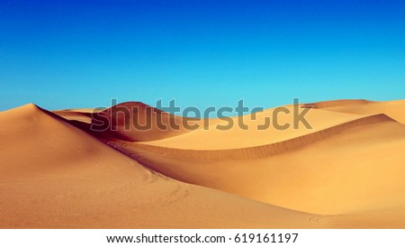 Sand dunes in the desert , warm dry sand under blue sky #619161197