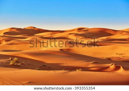 Sand dunes in the Sahara Desert, Merzouga, Morocco #393355354