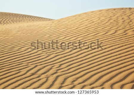Sand dunes of desert Thar  in Rajasthan, India #127365953