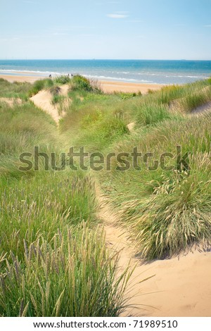 Sand dunes of Formby beach near Liverpool, the North West Coast of England