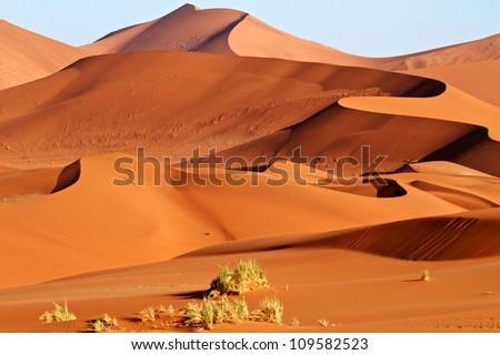 Sand dunes of the Namibian Desert