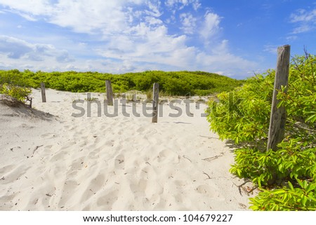 Sand dunes on the beach
