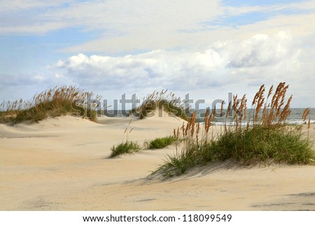 Sand Dunes on the Outer Banks of North Carolina