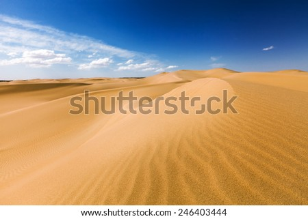Sand dunes under blue sky. Desert near Senek village, Kazakhstan. Previously, village houses transferred due to sands movement. Now desertification stopped by planted trees.