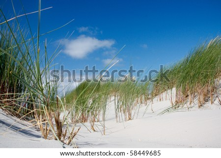 Sand dunes with grass and blue sky