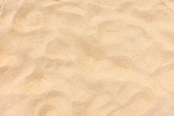 Sand nature texture in summer sun as background