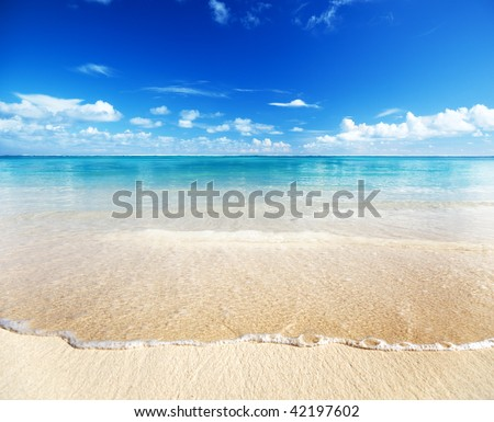 sand of beach caribbean sea #42197602