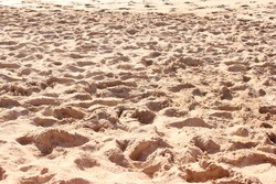 Sand patter in the summertime