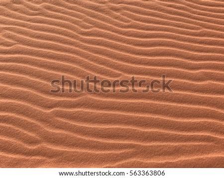 Sand ripples #563363806