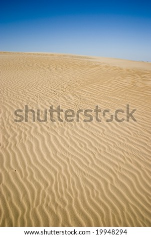 Sand ripples at Jockey Ridge State Park