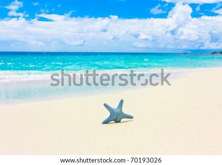 Sand Stars Sea