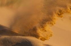 Sand storm in desert. Heat in the dunes