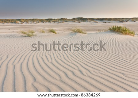 Sand-structures on the beach