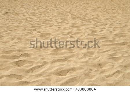 Sand texture on beach  #783808804