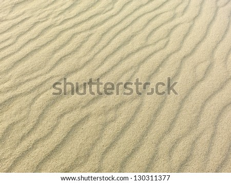 sand texture on sandy coral beach