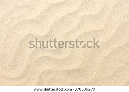 Sand texture. Sandy beach for background. Top view #378335299