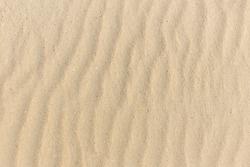 Sand texture. Sandy beach for background. Top view. Natural sand stone texture background. sand on the beach as background. Wavy sand background for summer designs.