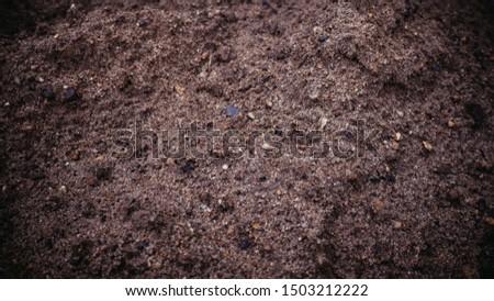 sand, wet sand texture. wet sand #1503212222