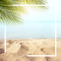 Sand with Palm and tropical beach and sea background with frame design for creative advertising Summer vacation and travel concept. Copy space