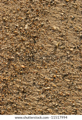 Sand with Rocks at a Beach