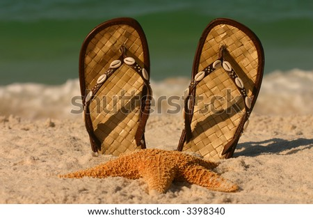 Sandals and starfish at the beach.  Ocean in the background with shallow DOF.