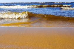 Sandbank, the wave rolls to the shore