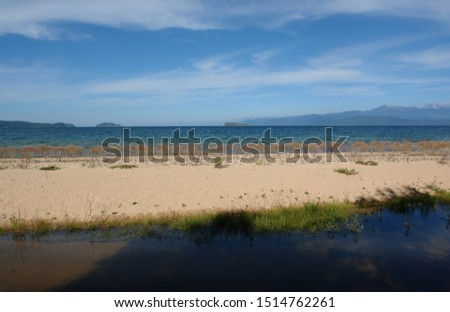 "Sandbar with dry plants of Isatis (Isatis oblongata) in a Snake Bay /Zmeyevaya Bay/ - Chivyrkuisky Bay, peninsula Svyatoy Nos (""Holy Nose""), Lake Baikal"