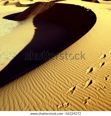 sanddunes in the desert