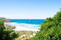 Sandfly bay, south island, New Zealand
