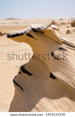 Sandstone dog head, fossil dunes, Abu Dhabi emirate, UAE, off road, visual illusion, visual perception, visual interpretation