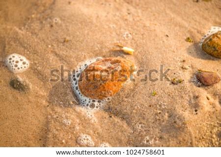 Sandstrand mit Schaum der Brandung #1024758601