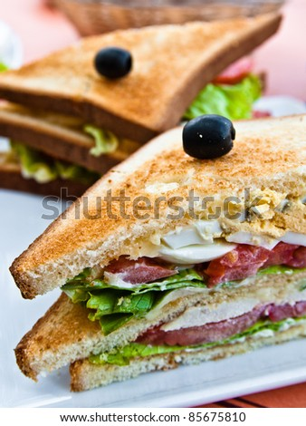 Sandwich with chicken, cheese and egg