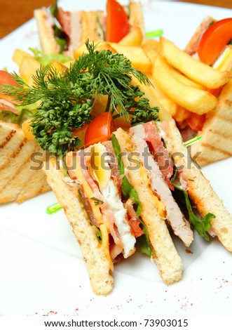 Sandwich with French Fries on a Plate
