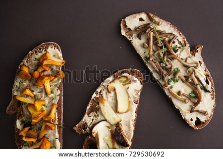 sandwiches with mushrooms on a dark bread on a monochromatic brown background #729530692