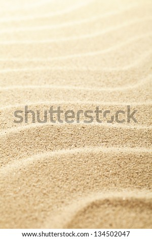 Sandy background. Sand beach texture for summer. Macro shot. Copy space